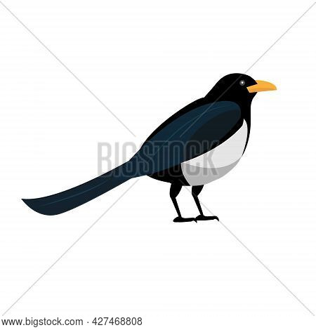 Magpie Bird Icon Flat Style. Isolated On White Background. Vector Illustration