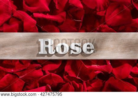 Pink Word In Wooden Letters On Red Rose Petals Background