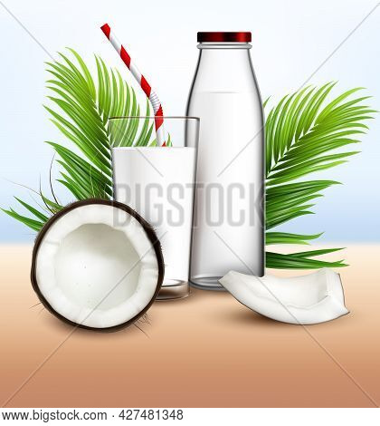 Coconut Milk Organic Drink And Palm Branch Vector. Bio Coconut Milky Beverage Glass With Straw, Crac