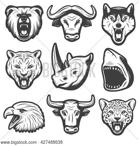 Vintage Wild Animals Set With Bear Buffalo Wolf Panther Rhino Shark Eagle Bull Tiger Heads Isolated