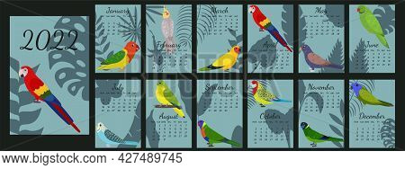 Calendar 2022 With Cartoon Parrots With Cover. Calendar Template With Tropical Leaf Silhouette Backg