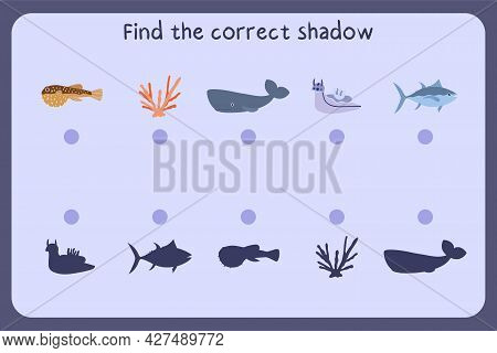 Matching Children Educational Game With Sea Animals - Puffer Fish, Coral, Sperm Whale, Tuna. Find Th