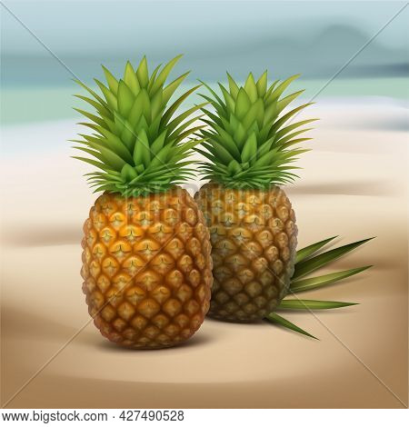 Vector Two Pineapples With Green Palm Leaf Isolated On Blur Seaside Background