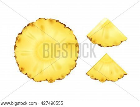 Vector Pineapple Round And Triangular Slices Or Wedges Isolated On White Background