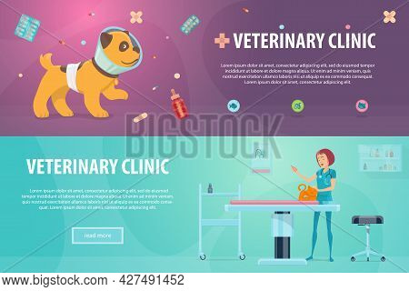 Veterinary Clinic Horizontal Banners With Sick Puppy Animal Food Pills And Doctor Treating Cat At Ho