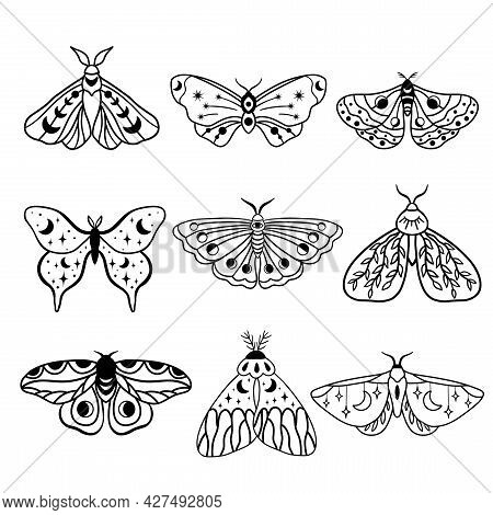 Night Moths With Moon And Crescent Moon Isolated . Hand Drawn Black Celestial Doodle Moth Vector Set