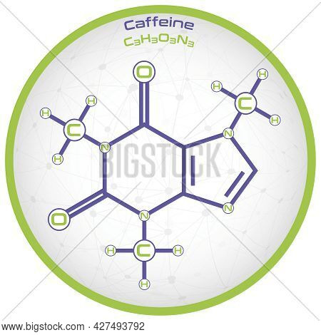 Large And Detailed Infographic Of The Molecule Of Caffeine