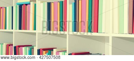 shelf of books in the library, toned photo