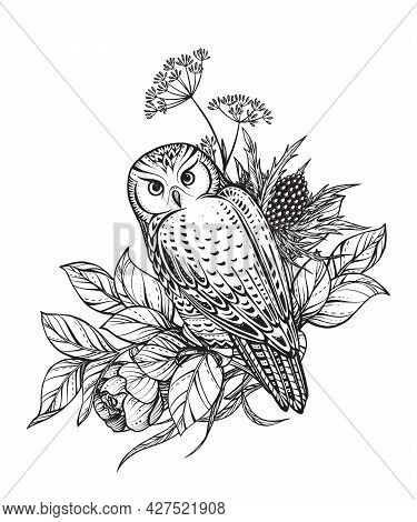 Vector Illustration Of Black And White Owl, Flowers And Herbs, Branches Isolated On White Background