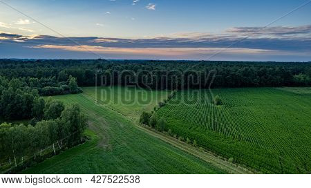Land Or Landscape Of Green Field In Aerial View. Include Agriculture Farm, House Building, Village.