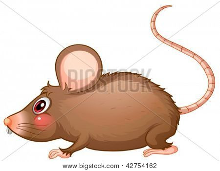 Illustration of a rat with a long tail on a white background