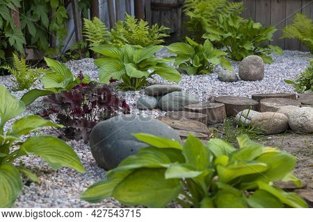 Rockery Rock Garden  With Big And Small Stones Through Which Flowers Grow