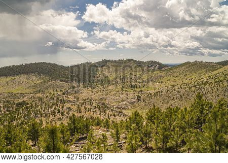 Black Hills, Keystone, Sd, Usa - May 31, 2008: Custer State Park. Green And Dry Brown Landscape Of S