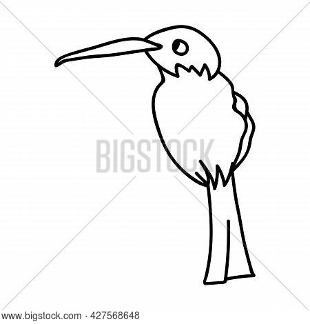 Single Hand Drawn Hummingbird. Doodle Vector Illustration. Isolated On A White Background.