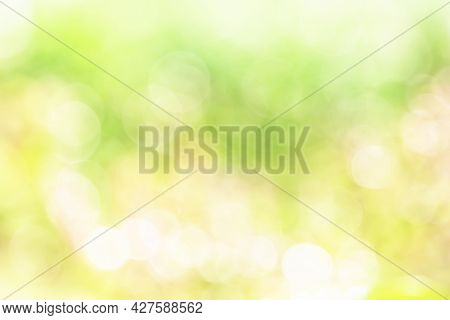 Green And Yellow Color Blurry Bokeh Background, Nature Green Blurry Background