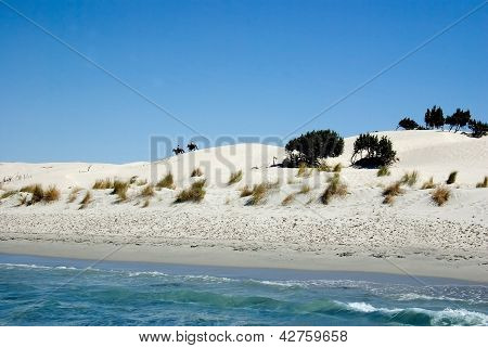 Knights In The Dunes Near The Sea