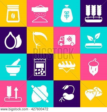 Set Seed, Acorn, Oak Nut, Seed, Sprout, Bag Of Flour, Scythe, Pumpkin Seeds, Coffee Beans And Flour