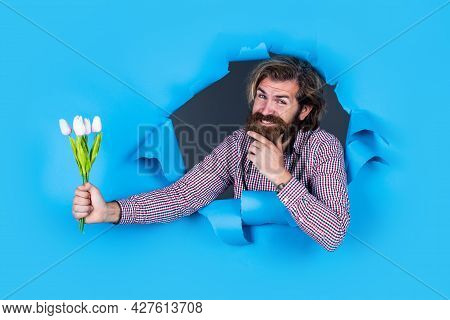 Gift With Love. Fathers Day. Bearded Man With Present Flowers. Brutal Caucasian Hipster Hold Tulip B