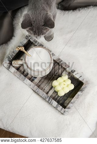 Home Decoration: A Grey Kitten Sniffing On A Mug With Milk Cappuccino And A Bubble Candle In A Marbl