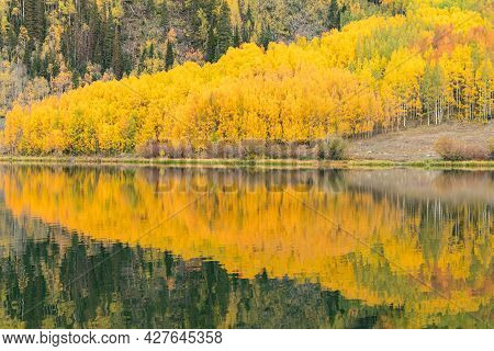 Reflection Of Autumn Aspen Trees Along Lake In The San Juan Mountains Of Colorado