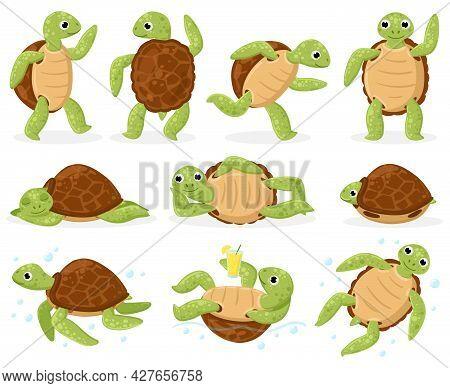 Cartoon Turtle. Cute Sea Tortoise Swimming, Dancing And Sleeping, Little Aquatic Reptiles Cartoon Ve