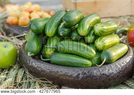 Ripe Juicy Cucumbers Lie In A Wooden Bowl, Arranged With Straw. The Concept Of A Fresh Harvest.