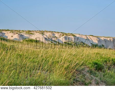 tall grass moved by a breeze at a bottom of arroyo - summer scenery in Pawnee National Grassland in Colorado