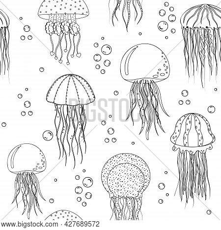 Jellyfish Pattern Black Outline White Background, Vector Illustration.