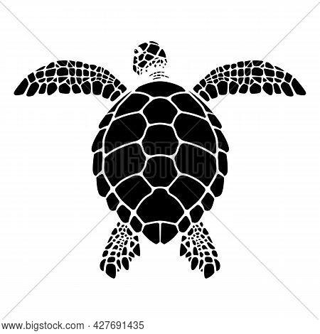 Swimming Sea Turtle Graphics, Turtle Back Vector Illustration, Tortoiseshell Structure Illustration.