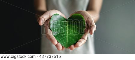 Green Energy, Esg, Renewable And Sustainable Resources. Environmental And Ecology Care Concept. Clos