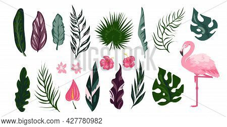 Flamingo Tropical Collection. Exotic Bird With Palm Tree Leaves. Cartoon Tropic Flora And Fauna Set.