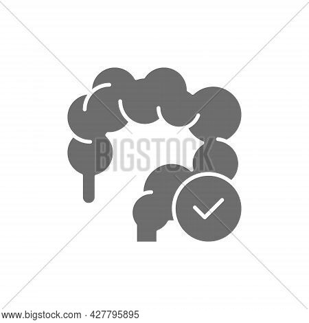 Healthy Intestines, Colon Grey Icon. Isolated On White Background