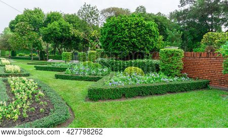 Pattern Of English Formal Garden Style, Gardens With Geometric Shape Of Bush And Shrub, Decoration W