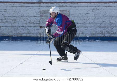 Sunny hockey player