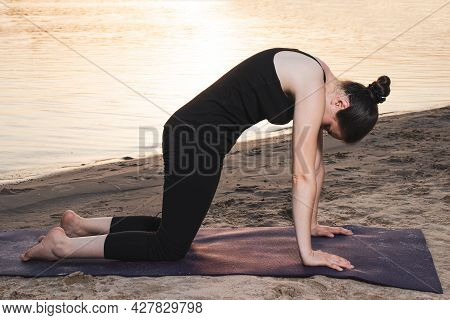 A Woman In Black Sportswear Practices Yoga While Standing In A Cat Pose, Cow Pose Or Marjariasana. H