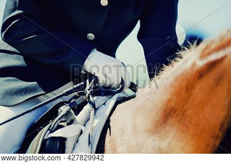A Rider's Hand In A White Glove With A Rein. Equestrian Sport. Dressage Of Horses In The Arena. Hors