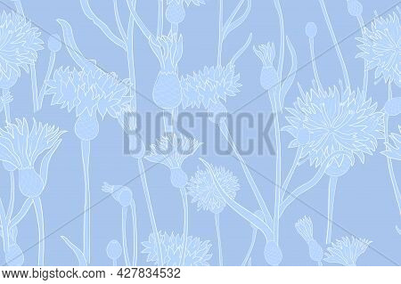 Seamless Pattern With Blue Colored Cornflower With White Outlines. Handrawn, Overlapping Shapes Of T