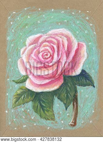 Hand-drawn Light Rose On A Deep Background, Drawn With Oil Pastels On Craft Paper. Romantic Girly Ca