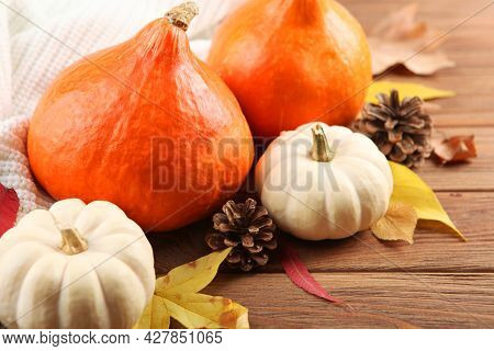 Pumpkins On A Colored Background. Thanksgiving Background. Autumn Background.