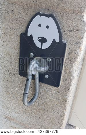 Dog Attachment Store Entrance Entrance Near Door Shop On The Street Waiting For The Owner During Sho
