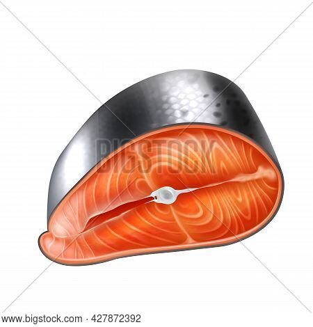 Realistic Detailed 3d Raw Salmon Slice Vector Realistic Isolated Illustration. Fresh Fish Seafood Fi