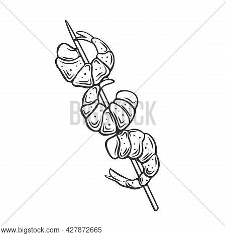 Grilled Shrimp On A Skewer, Roasted Prawn Colored Outline Vector Icon, Drawing Monochrome Illustrati