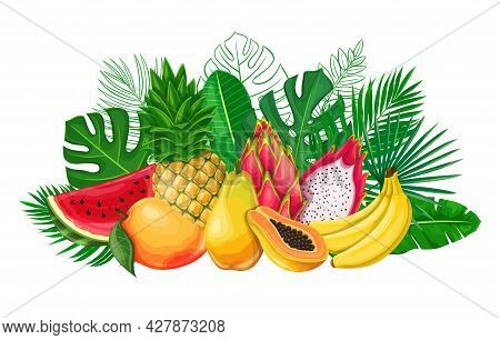 Tropical Leaves With Exotic Fruit Banner. Jungle Exotic Leaf Poster With Outline Areca Palm, Monster