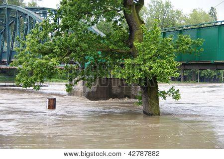 Flood near bridge