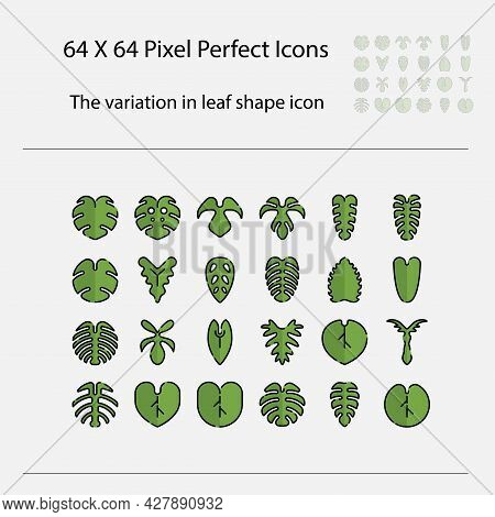 The Variation Of Leaf Shape Icon. Variation Of Leaves Vector Filled Outline Icon