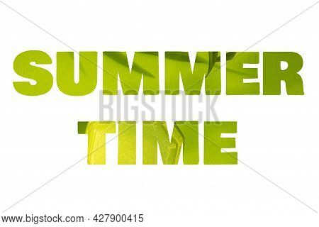 Summer Time Is Wtitter Of Green Leaves On White Background. Summer Abstract Background