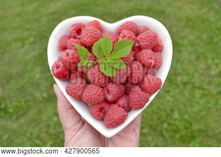 A Woman Farmer Holds A Heart-shaped Plate In Her Hand, In Which A Ripe Raspberry With A Leaf Lies Ag