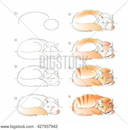 How To Learn To Draw Sketch Of Cute Sleeping Ginger Cat. Creation Step By Step Watercolor Painting.