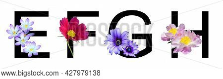 Flower Font Alphabet E, F, G, H Made Of Real Flowers. Collection Of Flora Font For Decoration In Spr