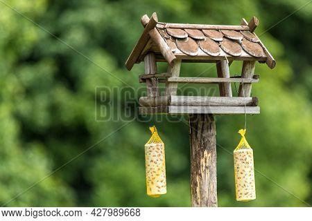 Garden Bird Feeder. Feeders For Birds In The City Park. Blurred Background. Feeding For Birds.
